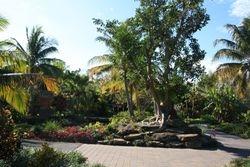 Botanical Gardens - Naples FL