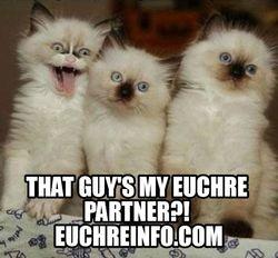 That guy's my Euchre partner?!