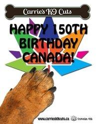 Canada 150th Flyer