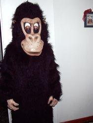 Willie the Gorillie
