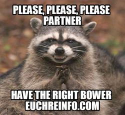 Please, please please partner...have the right bower.