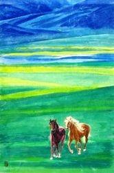 Pair Horses 1
