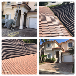 Roof Cleaning Chemical