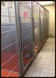 Indoor Canine Runs
