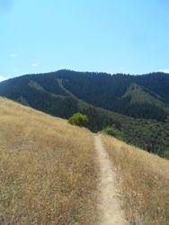 Trail to Tunnel Ridge
