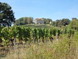 Chateau Viella