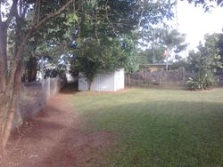 Side Yard After