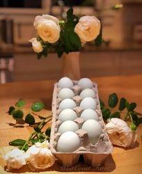 Opal Legbar eggs