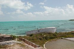 Sea-pens for the older conch at the conch farm