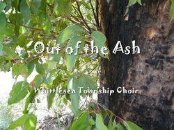 Out of the Ash CD cover