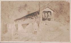 Schell's Bridge