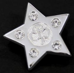 Guiding Star Award