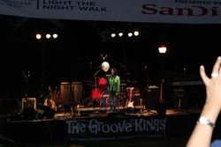 Light The Night Walk 2012