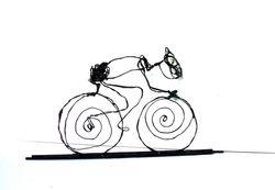 wielrenner nieuw 7