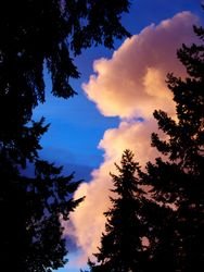 Crazy Skies