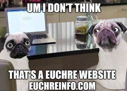 Um, I don't think that's a Euchre website.