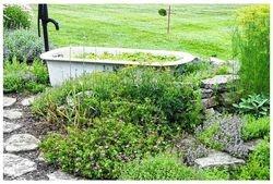 Garden of Roger and Zelpha Flora