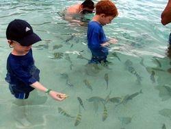 Coki Beach: Best Snorkel Beach