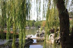 Gardens at Pan Pacific Hotel in Suzhou