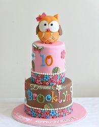 Owl Themed Cake