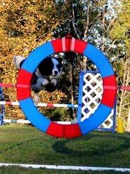 Sailing thru the tire