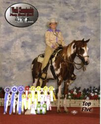 Crystal and Dude Worlds Top 5 (Stallion)