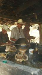 Los guacales