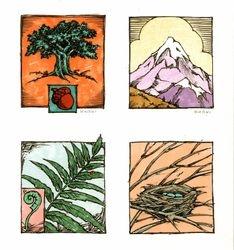 Design ideas for book cover