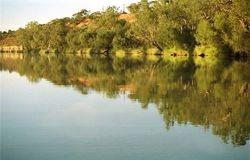 More still water