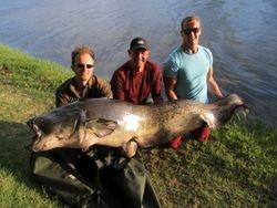 Martin ' s 200lb wels catfish