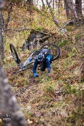 Adrenalin Media bilder