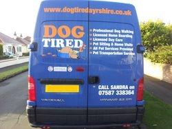 Dog Tired Van Rear View