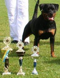 Nordic Winner 2005