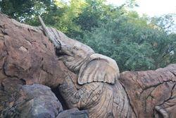 Tree of Life, Animal Kingdom, Orlando