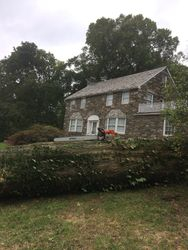 Oak Tree removed from Media, PA 19063
