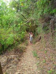 Peek Trail