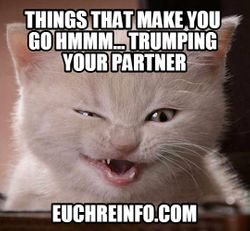 Things that make you go hmmm...trumping your partner.