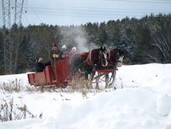 Sleigh Ride with Wally and Winston