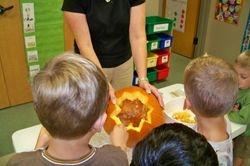 Scooping pumpkin pulp
