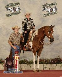 2012 PtHA Reserve World Champion - Half Arabian Open Western Pleasure