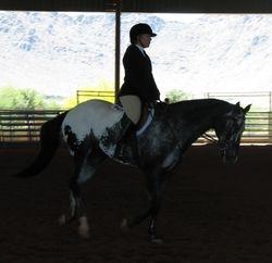 Lori Slifer and Sir Chance-Alot