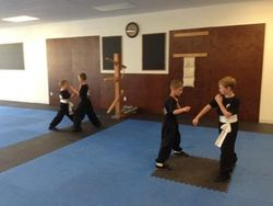 Kids Kung Fu Conditioning Drills