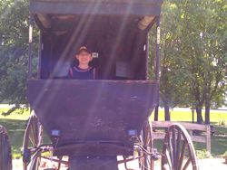 Get you picture taken in a real Amish Buggy