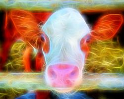 Cow created in Topaz Glow