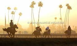 Hazy Santa Anita Sunrise