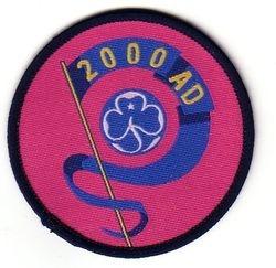 2000 Millennium Cloth Badge