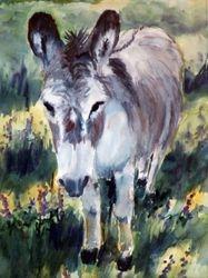 Sister Sarah the Donkey