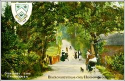 Halesowen Postcard. c1903.