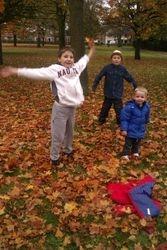 Leaf Throwing