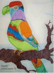 Parrot '79